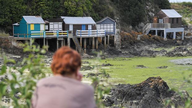 Una mujer observa el rastro de algas que ha dejado la marea en una playa de Francia