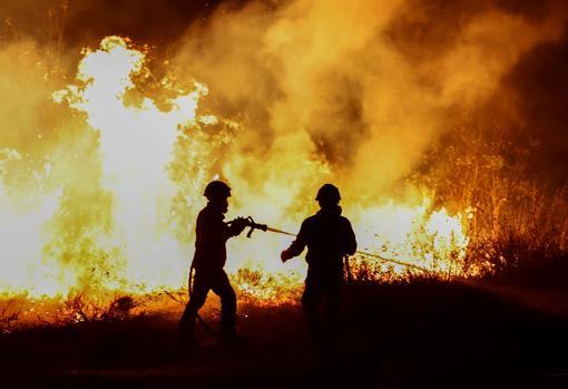 Bomberos trabajan en la extinción de uno de los fuegos declarados este verano