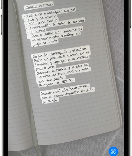 Captura de pantalla sobre el proceso para extraer el texto de una foto