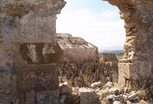 La gran mezquita rural oculta en un cortijo malagueño Cortijo-Las-Mezquitas2-kMIE--510x349@abc