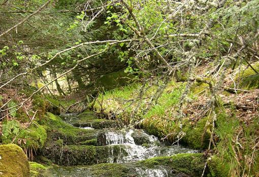 Tejedelo waterfall